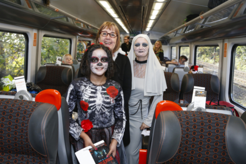Spooky Train iq-0652