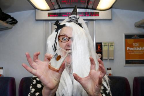 Spooky Train iq-9768