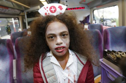 Spooky Train iq-9842