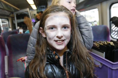 Spooky Train iq-9845